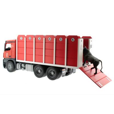 Camion mixto de toros y vacas